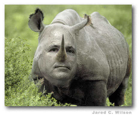 mccain_rino.jpg